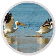 Two Pelicans Taking Off Round Beach Towel