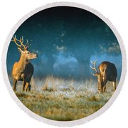Two Stags Round Beach Towel