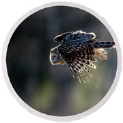 Ural Owl Flying Against The Light To Catch A Prey  Round Beach Towel