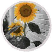 Urban Sunflower - Black And White Round Beach Towel