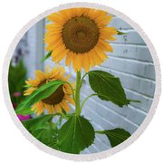 Urban Sunflower Round Beach Towel