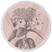 Viburnum Blush Pink Flower Round Beach Towel