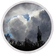 Round Beach Towel featuring the photograph Visions Beyond by Rick Furmanek