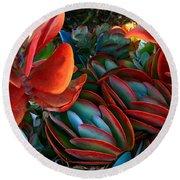 Vivid Paddle-leaf Succulent Round Beach Towel