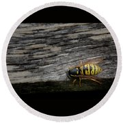 Wasp On Wood Round Beach Towel