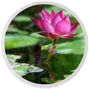 Water Lily And Little Frog Round Beach Towel