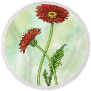 Watercolor Gerbera Daisy Botanical Round Beach Towel