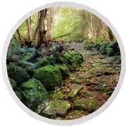 Waterfall Path Round Beach Towel