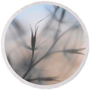 Round Beach Towel featuring the photograph Weed Abstract 4 by Marianna Mills