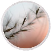 Round Beach Towel featuring the photograph Weed Abstract by Marianna Mills