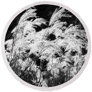 Weed Grass Black And White Round Beach Towel