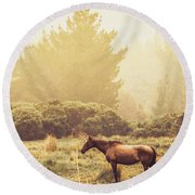 Western Ranch Horse Round Beach Towel