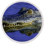 Round Beach Towel featuring the photograph Wetlands Gator Close-up by Tom Claud