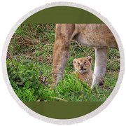 What Could Be Cuter Than A Baby Lion Cub? Round Beach Towel