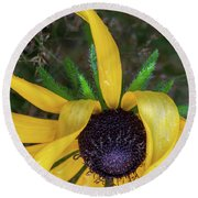 Round Beach Towel featuring the photograph When Nature Gives The Finger by Dale Kincaid