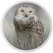 White Beauty In The Field Round Beach Towel