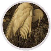 White Egret In Tree Round Beach Towel