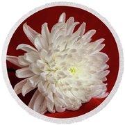 White Flower On Red-1 Round Beach Towel