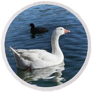 White Goose In A Pond Round Beach Towel