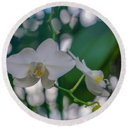 White Orchid Round Beach Towel