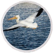White Pelican Wingspan Round Beach Towel