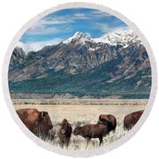 Wild Bison On The Open Range Round Beach Towel