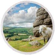 Wild Dartmoor Pony Round Beach Towel
