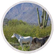 Wild Horses Tonto National Forest Round Beach Towel