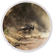 Wildebeest Leaps From The Bank Of The Mara River Round Beach Towel