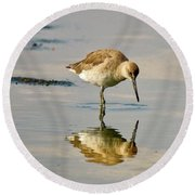 Willet Sees Its Reflection Round Beach Towel