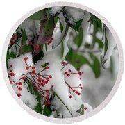 Winter Berries Round Beach Towel