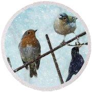 Winter Birds Round Beach Towel