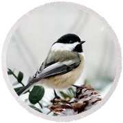 Winter Chickadee Round Beach Towel