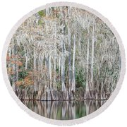 Round Beach Towel featuring the photograph Winter Cypress by Steven Sparks