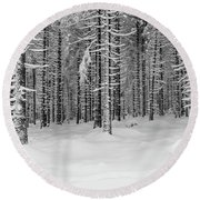 winter forest, Harz Round Beach Towel
