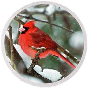 Winter Red Bird - Male Northern Cardinal With A Snow Beak Round Beach Towel