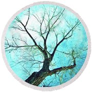 Round Beach Towel featuring the photograph Winter Tree Blue  by James BO Insogna