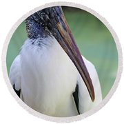 Round Beach Towel featuring the photograph Wood Stork 40312 by Rick Veldman