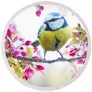 Yellow Blue Bird With Flowers Round Beach Towel