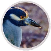 Yellow-crowned Night Heron Round Beach Towel