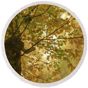 Yellow Fall Leaves - Blue Ridge Parkway Round Beach Towel