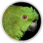 Yellow-naped Amazon Round Beach Towel