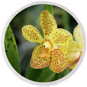 Yellow Spotted Orchids Round Beach Towel