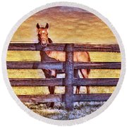 Young Kentucky Thoroughbred Round Beach Towel