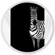 Round Beach Towel featuring the photograph Zebra Drama by Kay Brewer