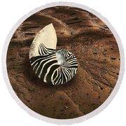 Zebra Nautilus Shell On The Sand Round Beach Towel