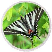 Zebra Swallowtail Din0279 Round Beach Towel