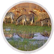 Zebras In Botswana Round Beach Towel