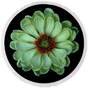 Zinnia Joy Round Beach Towel