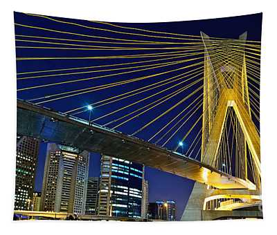 Sao Paulo's Iconic Cable-stayed Bridge  Tapestry